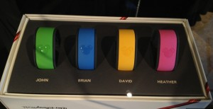 MagicBand RFID wristbands