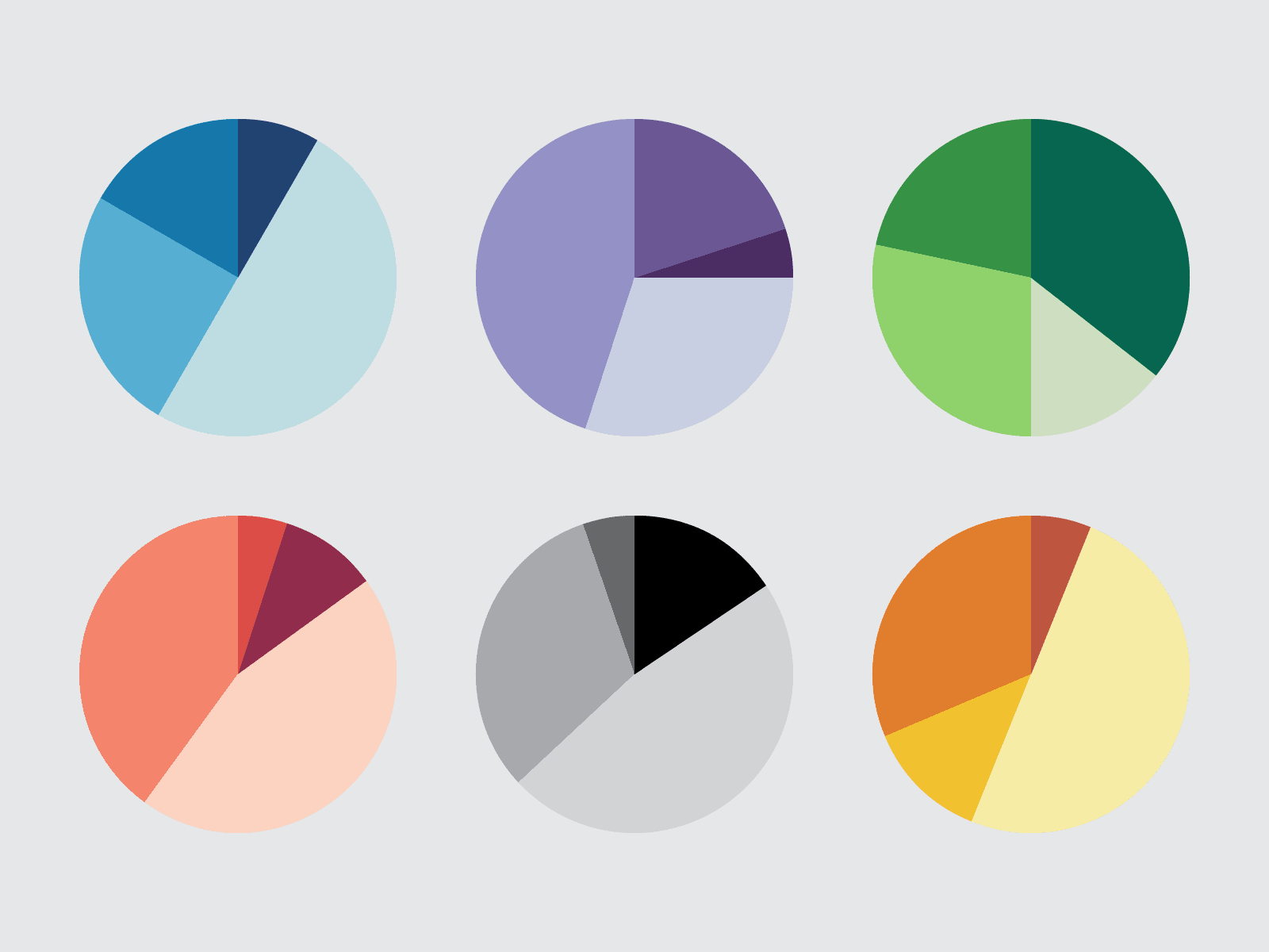 Pie charts representing diversity in GBA+ data analysis
